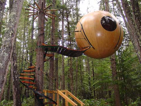 coolest tree houses of the world