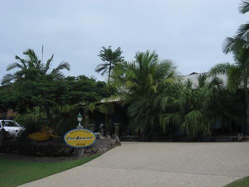 Cool Bananas hostel