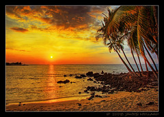Hawaiian Palm Sunset (Mellard) Tags: ocean sunset sea seascape beach water palms landscape hawaii coast sand pacific scenic shore bigisland hdr 7xp mywinners anawesomeshot mellard