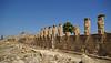 Pòrtic de les hermes (exterior), xistós o pista d'entrenament per a la cursa, amb finestrals flanquejats per imatges d'Hermes i Hèracles, Cirene
