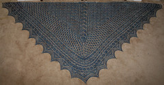 2289166358 e560d11785 m Garden Party Shawl