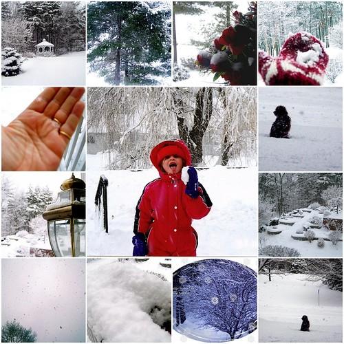 How Do You Capture A Snowflake