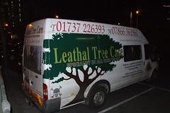 Leathal Tree Care