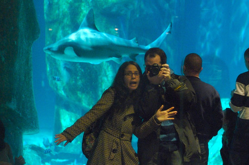London Aquarium 15.jpg