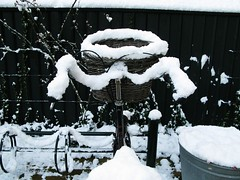 Snowfall Bicycle