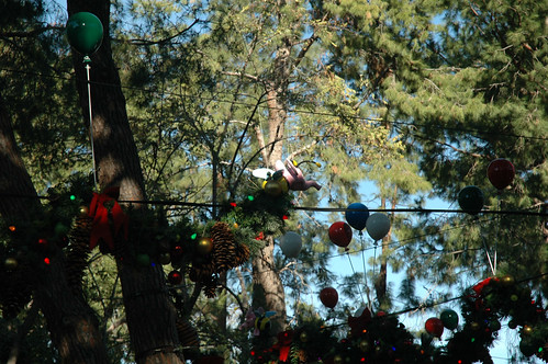 Critter Country - Scenery (20)