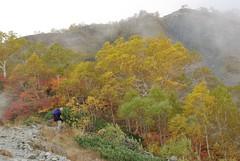 http://www.flickr.com/photos/tsuda/1575413686/in/set-534457/
