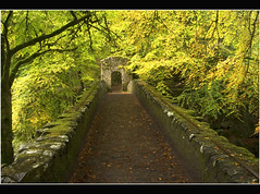 Autumn Path ~ Bridge at the Hermitage (Magdalen Green Photography) Tags: bridge autumn trees green yellow scotland arch searchthebest path perthshire scottish hermitage dunkeld pitlochry