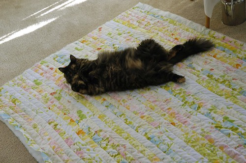 Olive on Strip Quilt