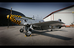 Was this the BEST BRITISH Fighter of WW II? (Never Was An Arrow II) Tags: mustang raf rcaf p51 15000 northamericanaviation unitedstatesarmyaircorps usaac curtisaircraft paulcardin dutchkindelberger britishgovernmentpurchasingcommission sirhenryself malcolmhoods paulcardin specialprojectsinresearch
