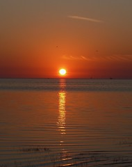 A Gulf Sunset (priscilla.starling) Tags: light sunset sky orange sun reflection water yellow clouds evening waves gulf sundown bright photos cream orb ripples picturesque stockshot waterwatereverywhere mybestphotos artofnature sunshotsanyweather weatherphotography avision anawesomeshot panasoniclumixdmcfz50 skypoetry wowiekazowie bestsunsetandsunrise flickrelitegroup ourworldofnature zenenlightenment sensationalskies gaveyachills priscillastarling dancingphotos yourpreferredpicture skiescloudsandsun floridapublicbeachesgardensparks citritbestofyour florida~thesunshinestate beautyfullworld stunningproshots flickrfullcolor losmajoresmomentosdetudia mothernatureathervest