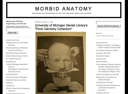Into the Blogosphere - Morbid Anatomy
