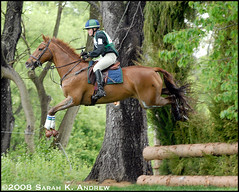 Tiffany Foster and Robin Hood (Rock and Racehorses) Tags: horse jump crosscountry explore foster xc robinhood cci 3day dressage eventing eventer jerseyfresh horsesatwork tiffanyfoster