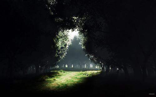 01156_darknesstolight_2560x1600.jpg