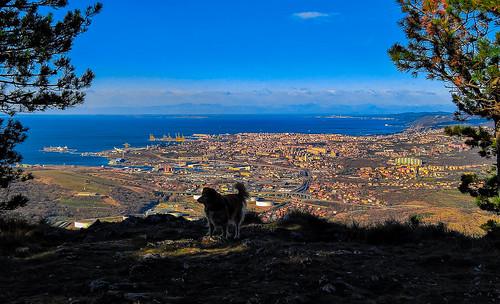 Trieste (Italia) vista da San Servolo (Slovenia)