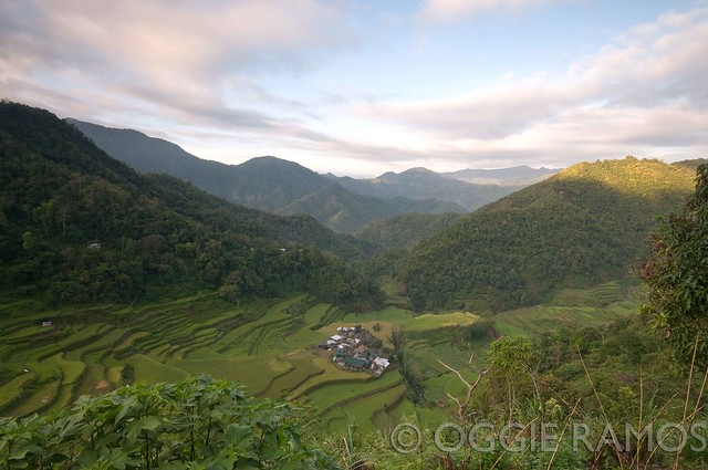 Bangaan - Terraces and Village in the Early Morning Light