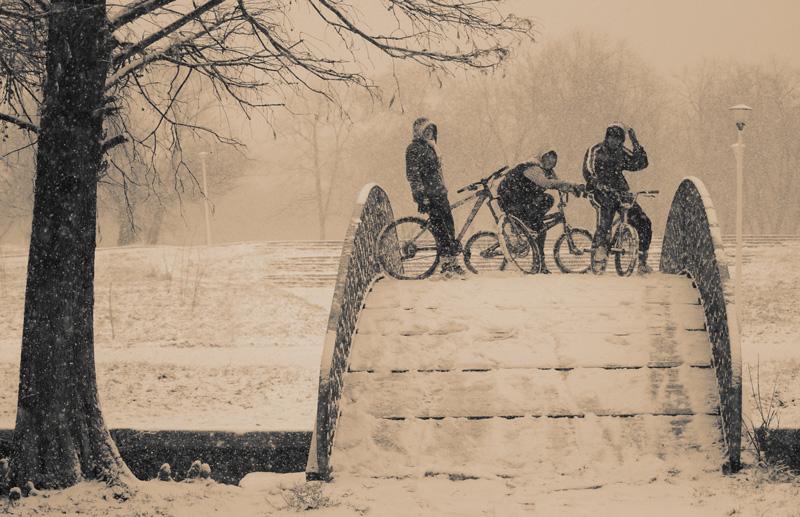 nins-145