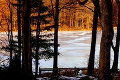 Sunset Walk (Emmy Gee) Tags: trees winter sunset lake snow cold yellow frozen glow