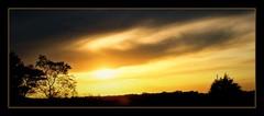 silhouettes (~no bullshit~) Tags: trees sunset silhouette soe isawthelight mybestphotos imagepoetry sunsunsun anawesomeshot globalvillage2 lunarvillage bestsunsetandsunrise ysplix ilovemypic goldsealofquality trulyelegantandclassy sunshineluckystar exquisiteimage natureselegantshots