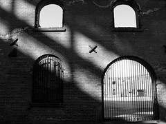Shafts of Light (Trish Mayo) Tags: windows newyork brooklyn gate shadows bricks dumbo warehouse artisticexpression abigfave diamondclassphotographer flickrdiamond shaftsofsunlight thebestofday gnneniyisi
