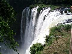 Quiero volver... (aqilesvip) Tags: naturaleza nature mxico hojas agua plantas salto veracruz cascada mjico eyipantla cadadeagua elsaltodeeyipantla