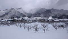 nagano snowcountry snow japan winter androidphone... (Photo: tourtrophy on Flickr)