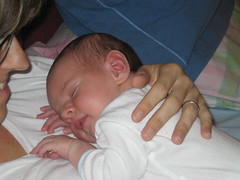 sulla mamma (janukats) Tags: jan neonato janrovatti