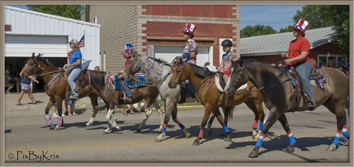 4th Of July parade, Towner ND... | EquiFriends