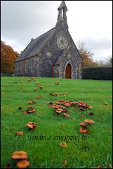 DSC_0097 (Sandra Armstrong) Tags: autumn 1224mm tyrone omagh churchofireland chapelofease seskinore