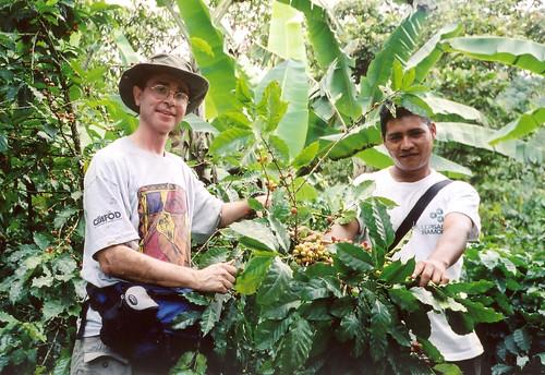 La Pita coffee plantation: Matagalpa, Nicaragua [Photo by nagillum] (CC BY-SA 3.0)