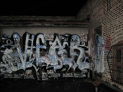 dog days (VANDAL TEAM SUPREME) Tags: chicago 30 dirty rabies shygirl fuckers vts vear