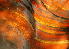 Wet orange (jurek d.) Tags: orange usa water america river montana rocks stream glaciernationalpark sic supershot jurekd flickrjobdiff