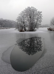 Lac du môle (wilphid) Tags: winter white snow nature reflexions hautesavoie superbmasterpiece top20white top20everlasting