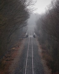 I ain't seen the sunshine since I don't know when (circulating) Tags: railroad trees mist fog train vanishingpoint interestingness woods community bend kentucky ky traintracks tracks explore week1 rails curve railbed 10faves firsthand 2008challenge 010508 westpaducah thisisky