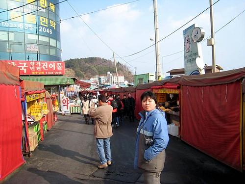 Korea (592)