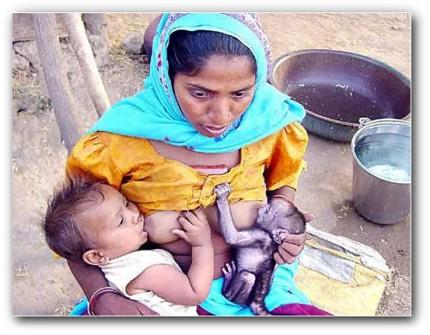 Imagen sorprendente y didáctica | La generosidad de los pobres ceslava 0