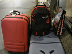 紅和黑組成的裝備