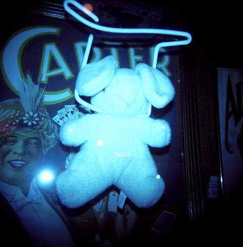 Bunny Holga