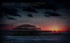 Brighton_Pier_and_Starlings_1600x1000.jpg (imjustcreative) Tags: sunset wallpaper beach landscape photography brighton coastal desktoppicture desktoppictures starlings brightonpier flockofbirds desktopphoto desktopphotos wallpaperiphotoedited