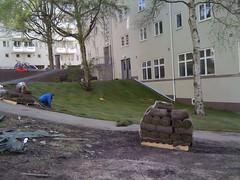 (C.Bry@nt) Tags: oslo norway norge photofriday noruega bryant scandinavia akershus iflickr skandinavia