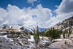 High Country in Yosemite.jpg (YOSEMITEDONN) Tags: trees snow mountains pine clouds yosemite highcountry tiogapass olmstedpoint specland