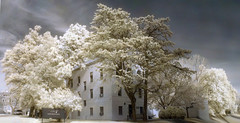 Catholic University (zachstern) Tags: trees wallpaper building tree canon landscape ir arbol university catholic tr boom rbol infrared   albero tre puu arbre rvore strom baum trd  infravermelho  catholicuniversity   copac infrarot  ircamera  drzewo   stablo infrarrojos   infrapuna infrarood infrarouge  infrarossi   s30ir  thatsclassy inframerah      infravrs  infraerven