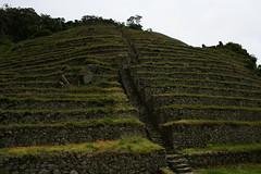 Peru (lyleston) Tags: machu pichu
