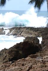 Hawaii '08 085