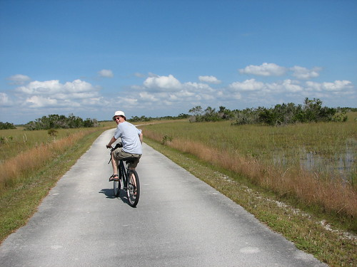 Take a bike ride at Everglades NP Shark Valley