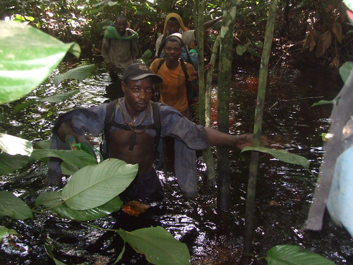 crossing a tributary of the Kasuku