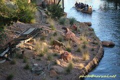 Disneyland (Narwal) Tags: disneyland anaheim ca california usa 美國 加州 迪士尼 樂園 frontierland mark twain riverboat riversofamerica davy crocketts explorer canoes