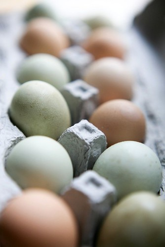 farm fresh eggs - woohoo!