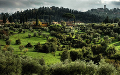 tuscany (brucexxit) Tags: italy florence hills tuscany siena bruno funnybear pagnanelli
