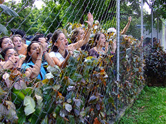 Students protesting (ervega) Tags: college students fence reja university peace venezuela protest uma paz movimiento caracas ucv usb universidad usm constitution yelling reforma ucab constitucion reform unimet universidades estudiantes studentmovement protestas gritando estudiantil movimientoestudiantil movimientoestudiantilvenezolano venezuelanstudentmovement